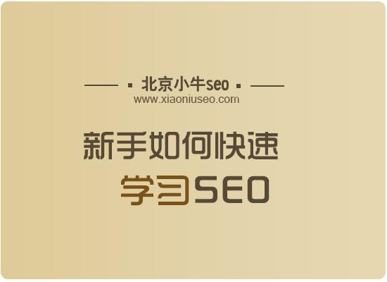 seo基础教程-新手如何快速学习SEO