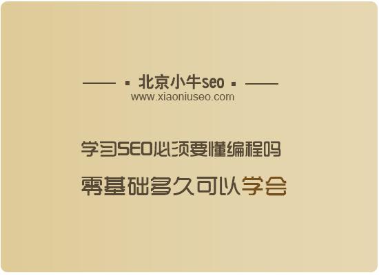 学习seo必须要懂编程吗?零基础多久可以学会